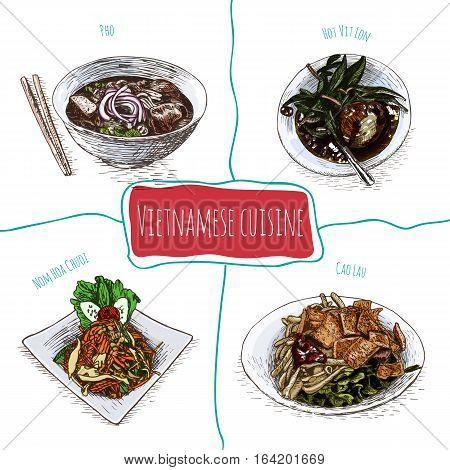 Vietnamese menu colorful illustration. Vector illustration of Vietnamese cuisine.