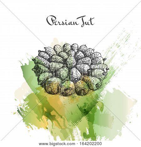 Persian Tut watercolor effect illustration. Vector illustration of Persian cuisine.