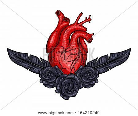 Red Valentines heart with plume and rose. Vector illustration