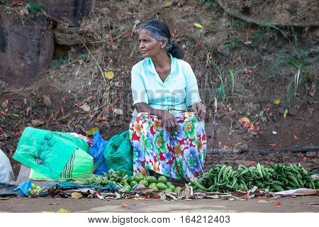 ELLA, SRI LANKA. July 27, 2016: A woman is selling the vegetables in the street in Ella in Sri Lanka. Many people in Sri Lanka earn some money by selling fruit and vegetables.