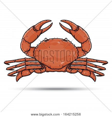 Hand draw crab isolated on white background