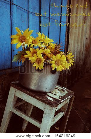 Wild Sunflower On Blue Wooden, Sorry Background