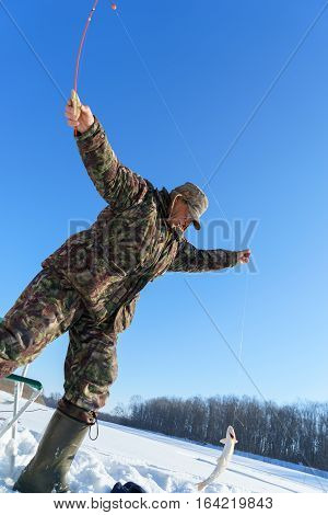One european man is happy about holding catched fish on winter fishing at sunny day under blue sky