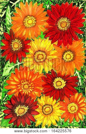 Background from gerbera flowers of red orange and yellow colours on green leaves hand painted picture watercolours.