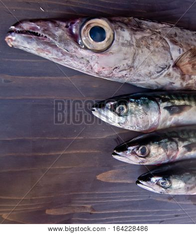 blue fish freshly caught great for a healthy diet ready to be cooked