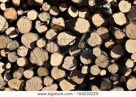 Leveled wood in the woodshed. Heating season. Wood.