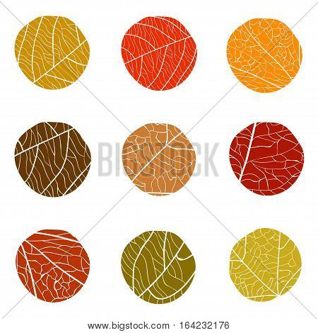 Autumnal vector pattern. Curve circles with white veins inside. The colors of autumn leaves red brown beige on a white background. The concept for logo.