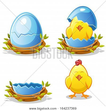 Cartoon funny chicken and blue egg in a nest of twigs in various stages of development chick young boy