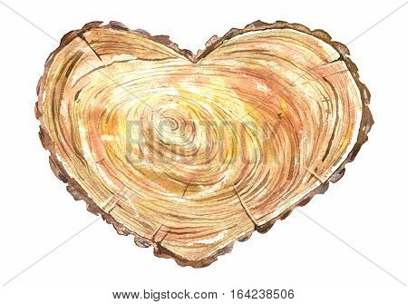 Cross section tree of a heart shaped.Wood slice.Watercolor hand drawn illustration.White background.