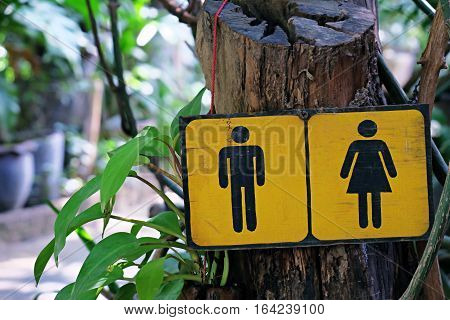 Toilet sign and nature background, Restroom sign and symbols
