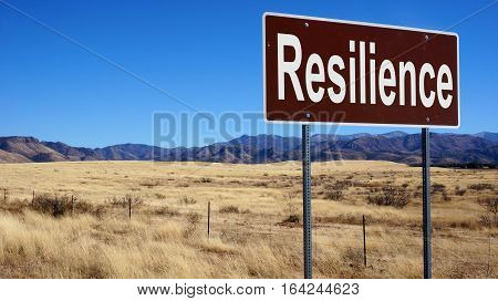 Resilience Brown Road Sign