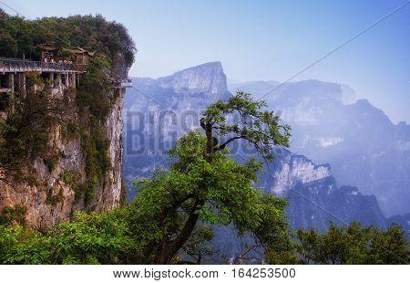 The cliff walk on the summit of Tianmen shan or mount tianmen in the city of Zhangjiajie in Hunan province China.