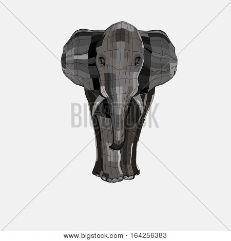 big and strong elephant. He is standing and looking. Isolate on white background.