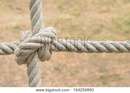 Rope knot line tied together with nature background,as a symbol for trust, teamwork or coordination.