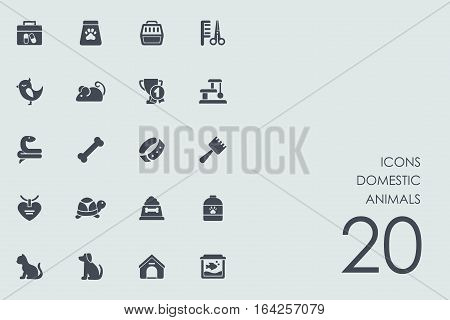 domestic animals vector set of modern simple icons