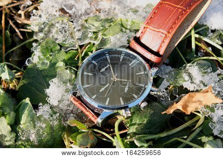 Modern and Luxury Wristwatch in Snow .