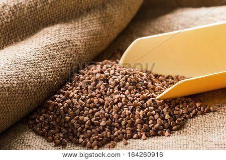 Buckwheat groats in a ladle on sackcloth