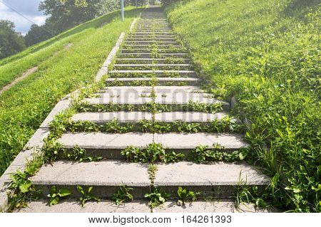 Stairs overgrown with grass to the top