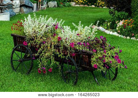 Vintage wooden cart decorated with blooming flowers