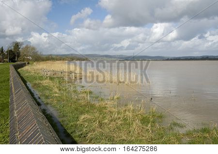 River Severn at Upper Framilode floods on Spring Tide Gloucestershire