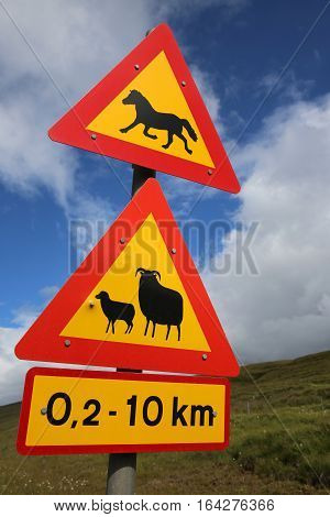 Road Warning Sign in Iceland. Northern Europe