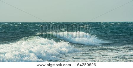 close up shot of the ocean surf