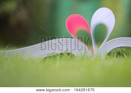 Book Curved A Heart Shape