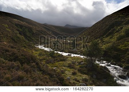 UK SCOTLAND Cairngorms National Park -- The river which runs near the peak of Cairn Gorm in Cairngorms National Park in Forest of Glenmore Scotland UK