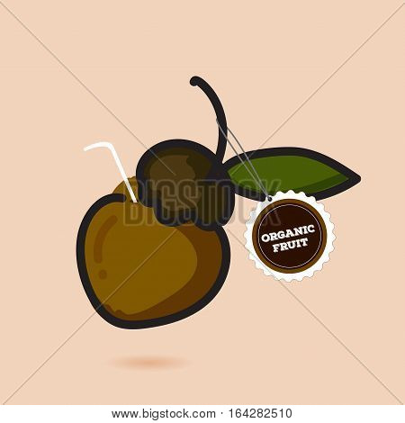 Abstract Organic fruit. fruit labels and elements. vector design