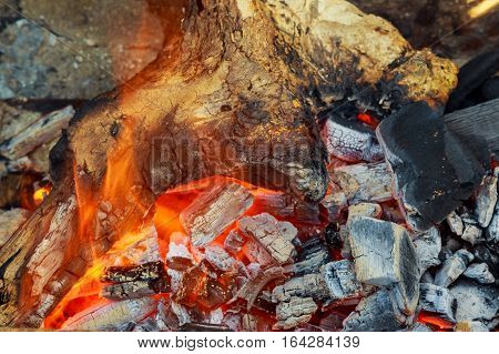 Burning firewood in the fireplace closeup, glowing logs, fire and flames Fire fireplace wood