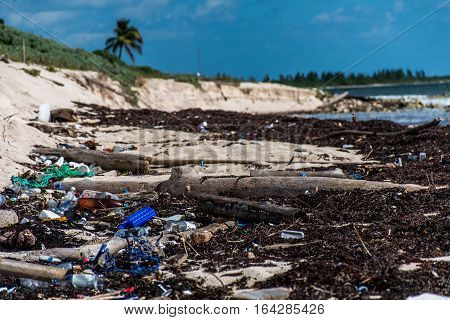 Mexico Coastline ocean Pollution Problem with plastic litter 2