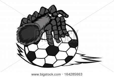 Tarantula Creeping on Ball Cartoon. Animal Character. Vector Illustration