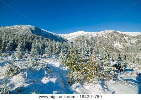 Climbing in the mountains in winter. National park