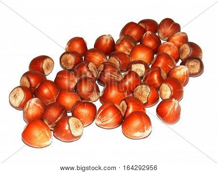 Pictures of natural hazelnut nuts in chocolate