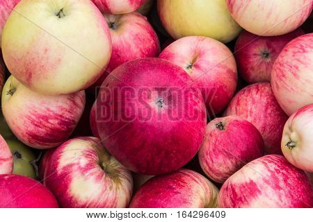 background of many beautiful juicy red and green apples