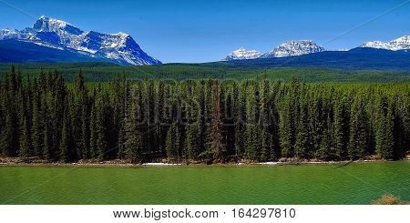 Candian Rockies.  Bow river valley in Banff National Park, Alberta, Canada