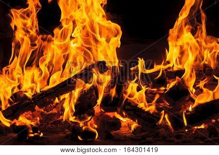 blazing fire flames, burning log and fire