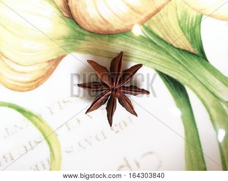 Close up of star anise spice fruits and seeds on white disk background