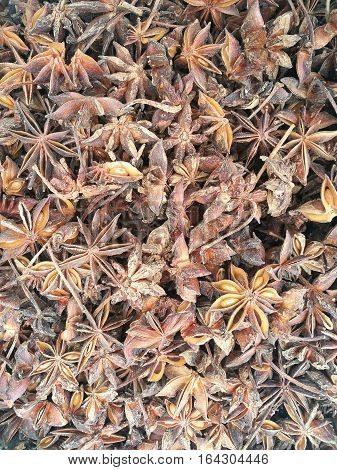 Close up of dried star aniseed background