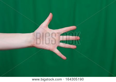 Female Hand Showing Five Fingers