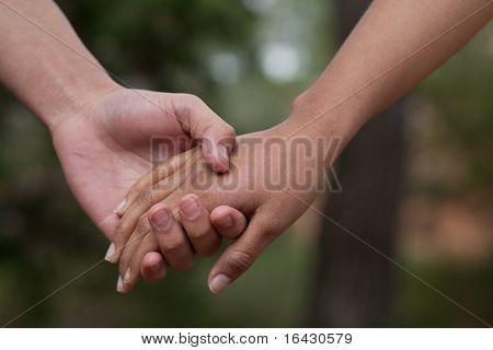 Liebhaber paar Holding hands in einer Gesamtstruktur (Sommer/Frühling)