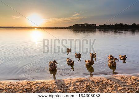 Beautiful Sunset Above Svet Lake - Trebon Czech Republic Europe