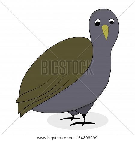 Bird quail cartoon animal vector. Illustration of cure quail isolated on white background