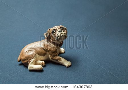 Lying dog photographed against a dark background