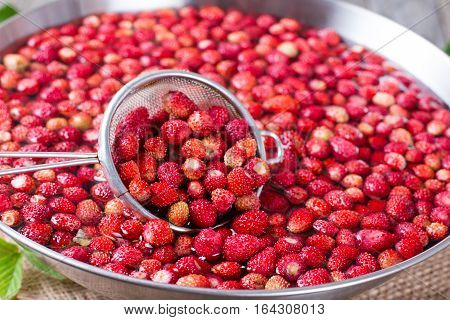 Fresh strawberries in the water in a sieve