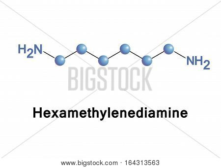 Hexamethylenediamine is the organic compound. The molecule is a diamine, consisting of a hexamethylene hydrocarbon chain terminated with amine functional groups.