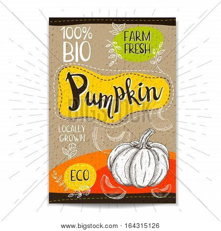 Colorful label in sketch style, food, spices, cardboard textured background. Pumpkin. Vegetables. Bio, eco, farm, fresh. locally grown. Hand drawn vector illustration.