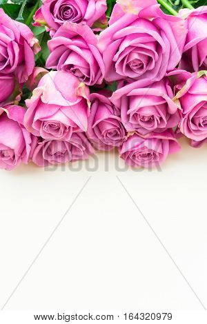Valentines day violet fresh roses row top view flat ly scene