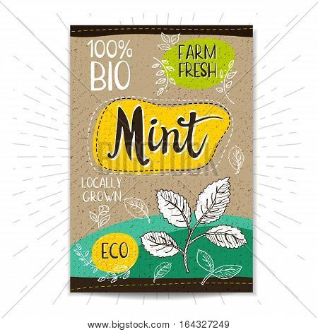 Colorful label in sketch style, food, spices, cardboard textured background. Mint Vegetables. Bio, eco, farm, fresh. locally grown. Hand drawn vector illustration