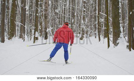 Man skier in red jacket slides in winter snow forest, telephoto